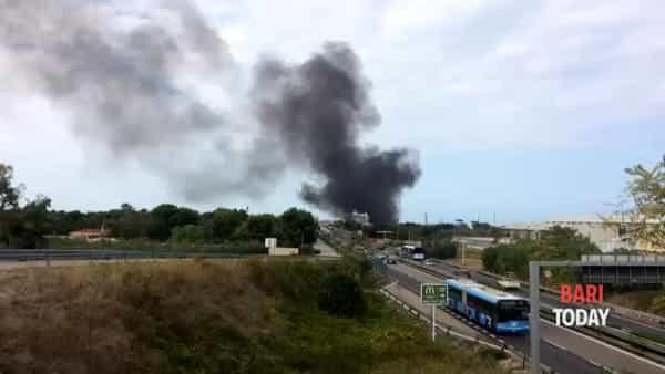 VIDEO | Rogo di rifiuti nelle campagne di Mungivacca: fumo nero invade la Statale 100