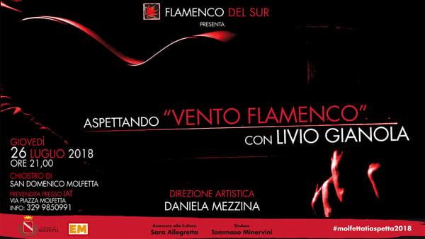 """A Molfetta """"Aspettando Vento Flamenco con Livio Gianola"""" il maestro della chitarra flamenca a otto corde"""