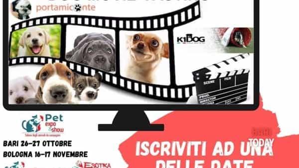 'Dog movie casting' arriva a Bari con la fiera Pet expò&show!