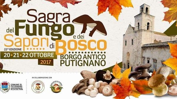 """XXII edizione della """"Sagra del fungo e dei sapori di bosco"""" nel borgo antico di Putignano"""