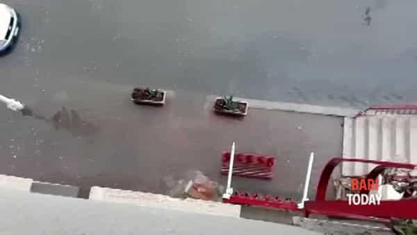 VIDEO | Maltempo nella provincia, a Sannicandro strade come fiumi dopo l'acquazzone