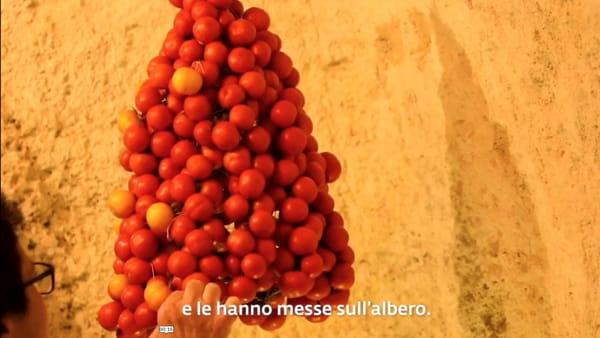 L'albero di Natale pugliese? Con i 'pomodori della regina': l'addobbo contadino che nasce da un'antica tradizione