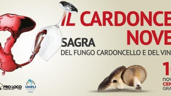 """A Gravina in Puglia 8^ Edizione della """"Sagra del Fungo Cardoncello e del Vino Novello"""""""