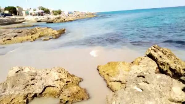 Cozze, acqua torbida e cattivo odore: liquami in mare, stop alla balneazione in un tratto del litorale