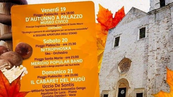 A Putignano la 23^ Edizione della Sagra del Fungo e dei Sapori di Bosco