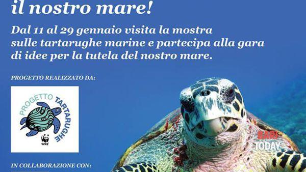 """""""Un cuore per le tartarughe"""" l'iniziativa del gran shopping Mongolfiera per la sensibilizzazione  al rispetto del mare"""