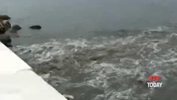 VIDEO | Il nubifragio si abbatte su Bari e la Condotta Matteotti tracima: liquami in mare