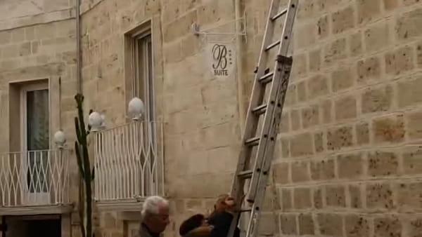 La gatta spaventata ha paura di saltare dal tetto, i cittadini le offrono una scala (e lei scende): il video è virale