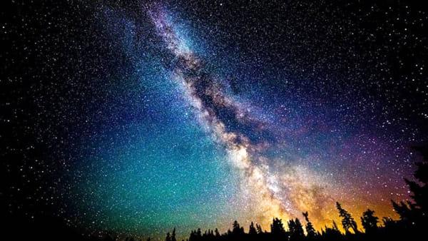 Una serata dedicata alla scoperta della flora e della fauna di Lama Balice e all'osservazione del cielo stellato