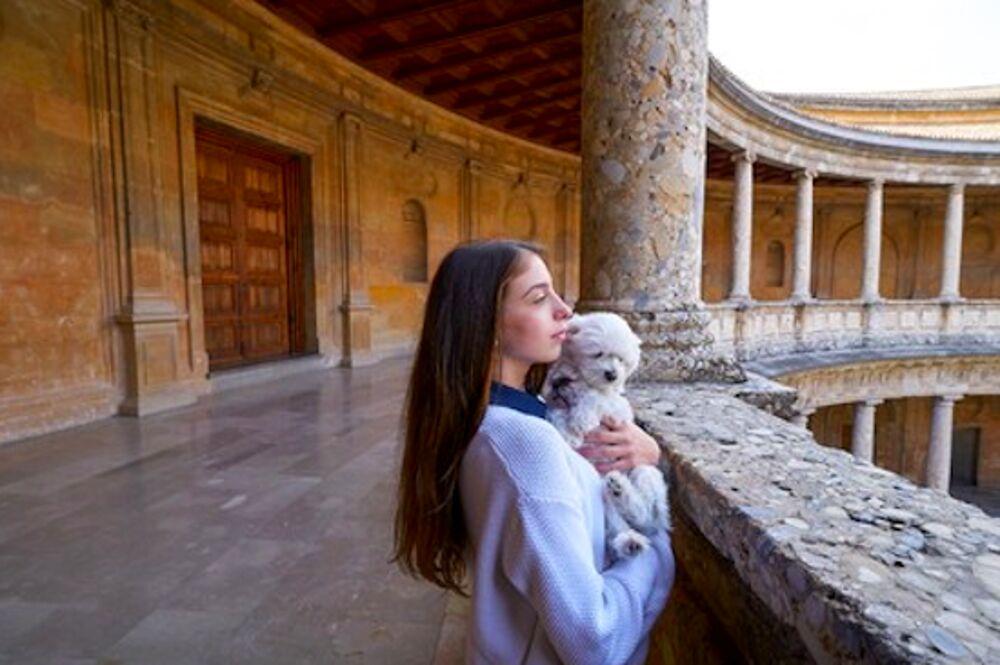 I musei dog friendly di Bari