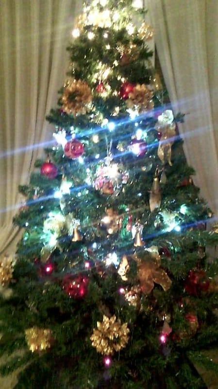Foto Di Alberi Di Natale In Casa.L Albero Di Natale A Casa Dei Baresi Le Foto Dei Lettori Di