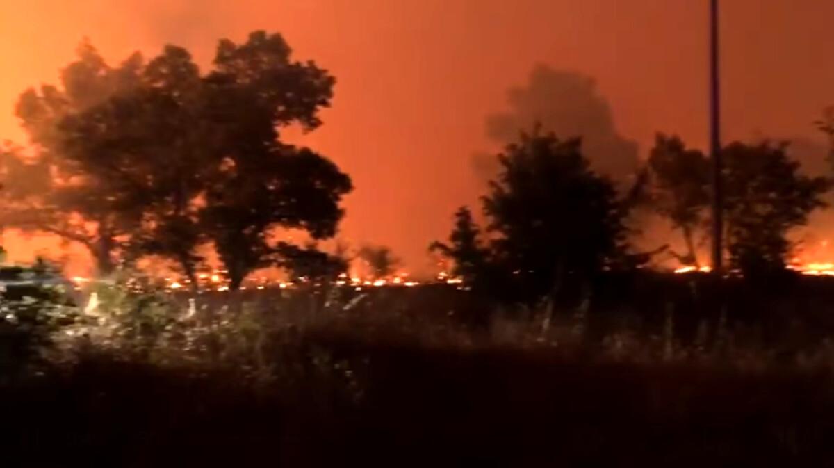 A Gravina torna a bruciare il bosco Difesa Grande: da quattro giorni si lotta contro le fiamme